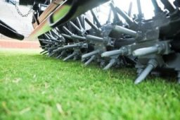 Maintaining Your Turf in Tifton, GA, Requires More Than Just Mowing